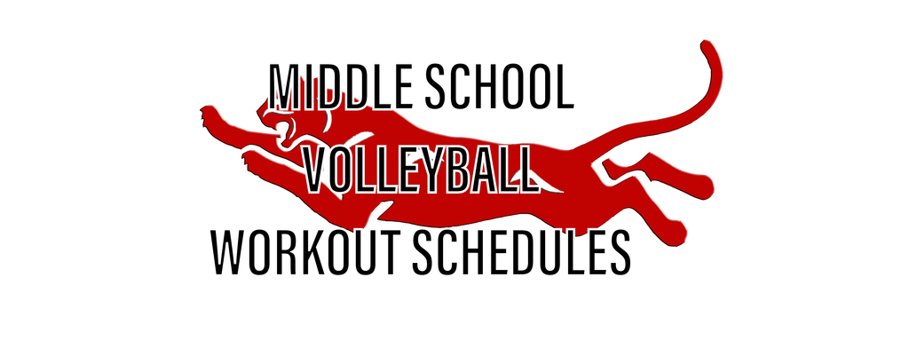 Volleyball workouts