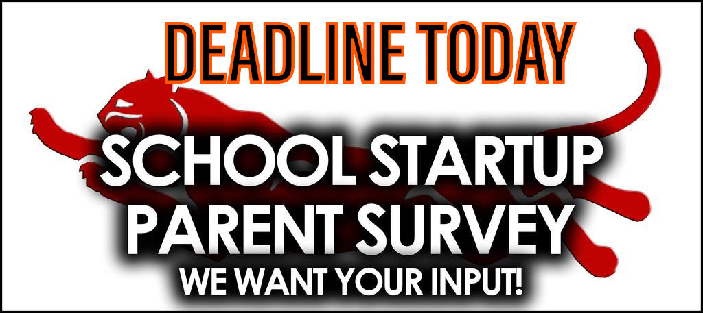 Parent Survey 2020-21